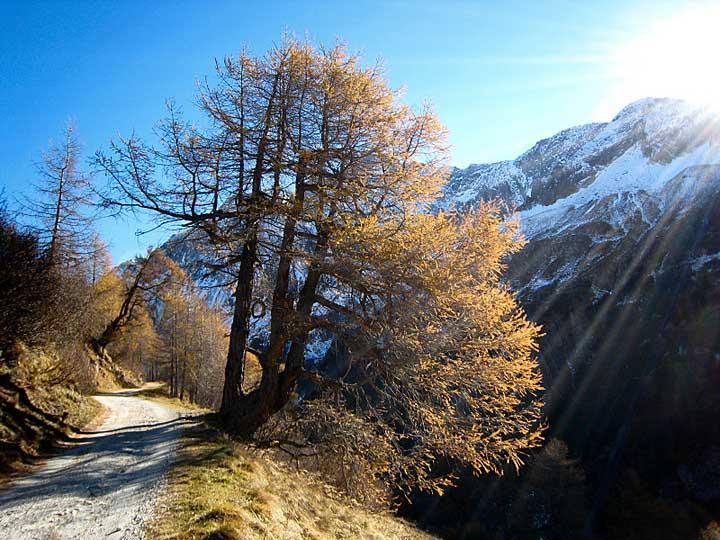Veduta lungo la strada per il Passo di Vizze